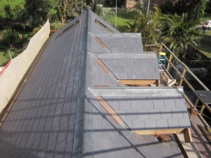 Shingles Roof Cabana House